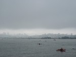 After swimming towards Alcatraz for a while, we turned course back towards the city. With currents, sometimes the shortest distance between two points isn't a straight line.